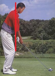 Tiger-Posture  Is your posture affecting your Game? Tiger Posture