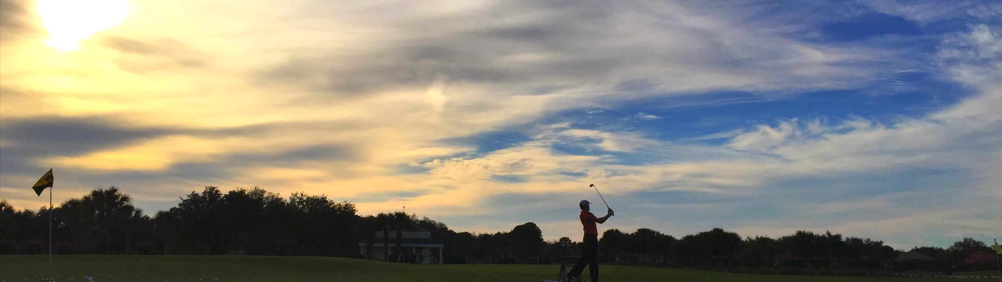 2015-01-25 Golfer